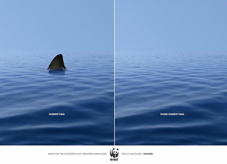 Страшно - ещё страшнее. Всемирный фонд дикой природы