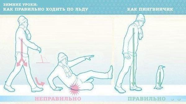 Как правильно ходить в гололедицу